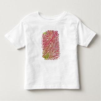Prairie Smoke in the rain at Theodore Toddler T-shirt