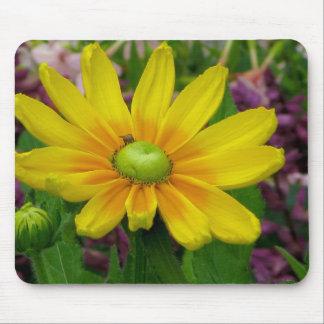 Prairie Sun Flower Mouse Pad