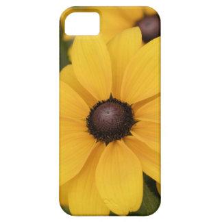 Prairie Sun iPhone 5 Case
