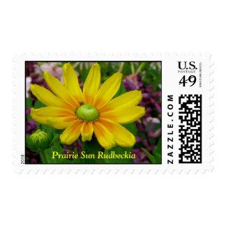 Prairie Sun Postage Stamp