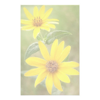 Prairie Sunflower - Helianthus maximilianii Stationery