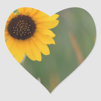 Prairie Sunflower Heart Sticker