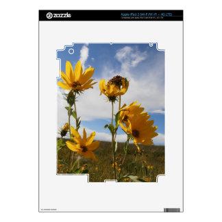 Prairie Sunset Decals For iPad 3