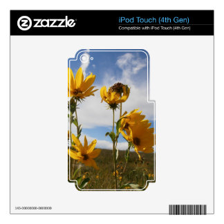 Prairie Sunset iPod Touch 4G Skins