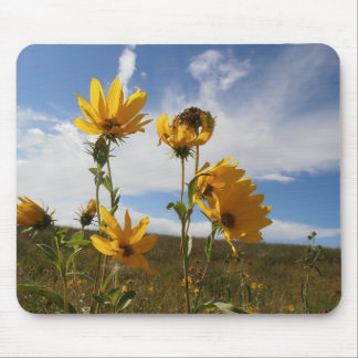 Prairie Sunset Mouse Pad