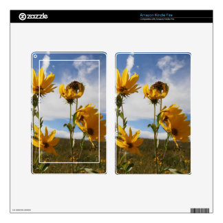 Prairie Sunset Skin For Kindle Fire