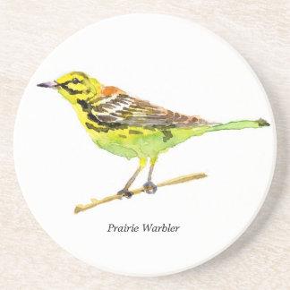 Prairie Warbler coaster