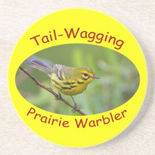 Prairie Warbler Coasters