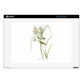 """Prairie Warbler John James Audubon Birds America 15"""" Laptop Skins"""