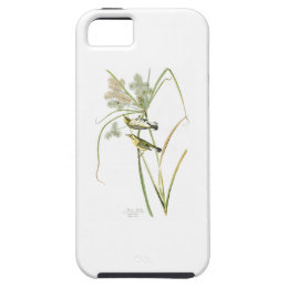 Prairie Warbler John James Audubon Birds America iPhone SE/5/5s Case