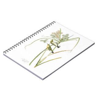 Prairie Warbler John James Audubon Birds America Spiral Notebook