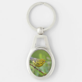 prairie warbler Silver-Colored oval metal keychain