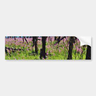 Prairie wildflower, fireweed growing in forest bur car bumper sticker