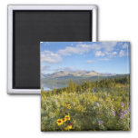 Prairie wildflowers and Lower Two Medicine Lake 2 Inch Square Magnet