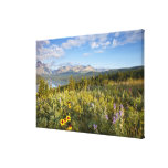 Prairie wildflowers and Lower Two Medicine Lake Canvas Print