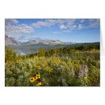 Prairie wildflowers and Lower Two Medicine Lake Greeting Card