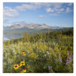 Prairie wildflowers and Lower Two Medicine Lake Large Square Tile