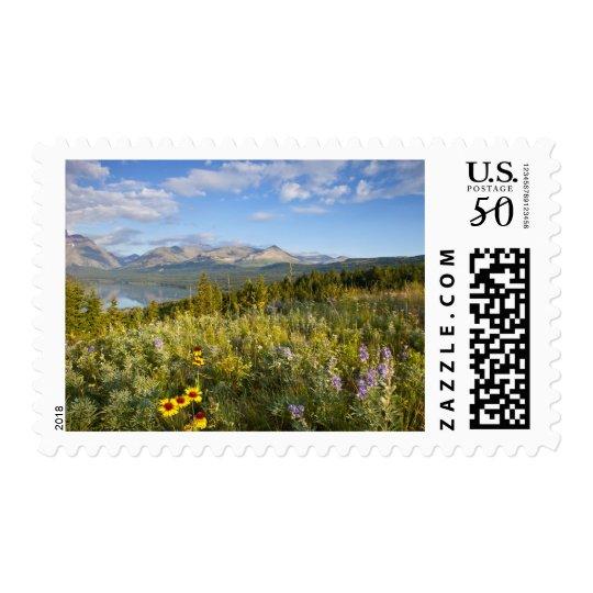 Prairie wildflowers and Lower Two Medicine Lake Postage