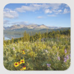 Prairie wildflowers and Lower Two Medicine Lake Square Sticker