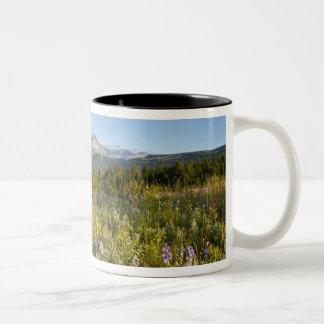 Prairie wildflowers and Lower Two Medicine Lake Two-Tone Coffee Mug