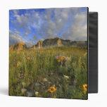 Prairie Wildflowers at Windy Creek in the Many Binder