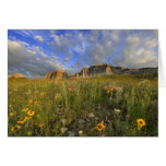 Prairie Wildflowers at Windy Creek in the Many Greeting Card