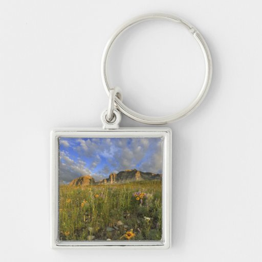 Prairie Wildflowers at Windy Creek in the Many Key Chain