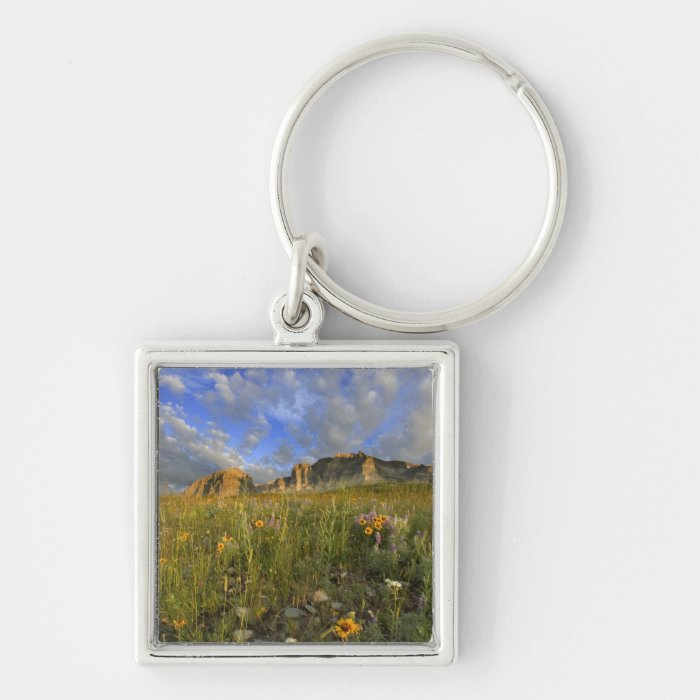Prairie Wildflowers at Windy Creek in the Many Keychain