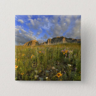 Prairie Wildflowers at Windy Creek in the Many Pinback Button