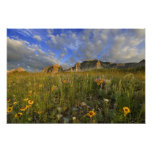 Prairie Wildflowers at Windy Creek in the Many Poster