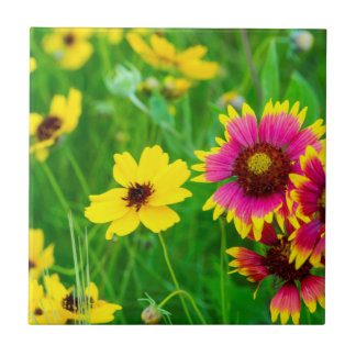 Prairie wildflowers in Hill Country Ceramic Tile