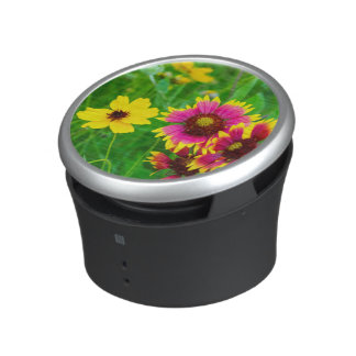 Prairie wildflowers in Hill Country Speaker