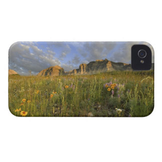 Prairie Wildflowers in Many Glacier Valley at iPhone 4 Cover