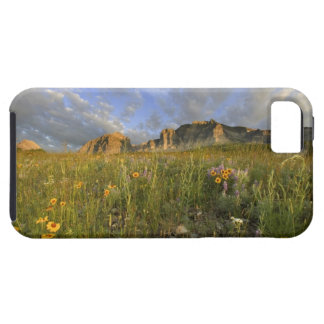 Prairie Wildflowers in Many Glacier Valley at iPhone SE/5/5s Case