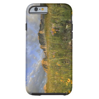 Prairie Wildflowers in Many Glacier Valley at Tough iPhone 6 Case