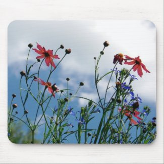 Prairie Wildflowers Mouse pad mousepad
