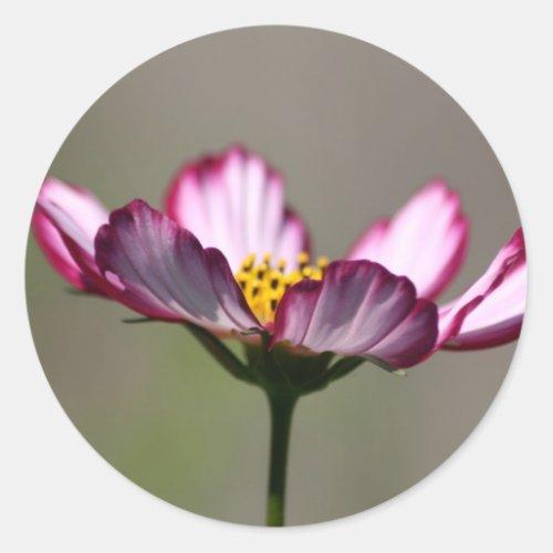 Praise Him Flower Classic Round Sticker