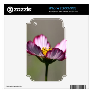 Praise Him Flower Skin For The iPhone 3GS