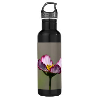 Praise Him Flower Water Bottle
