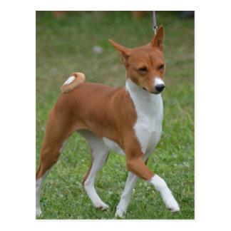Prancing Basenji Dog Postcard