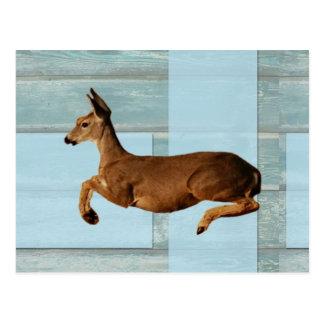 Prancing Deer Postcard
