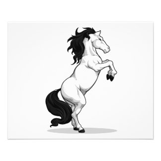 Prancing Stallion or Horse Full Color Flyer