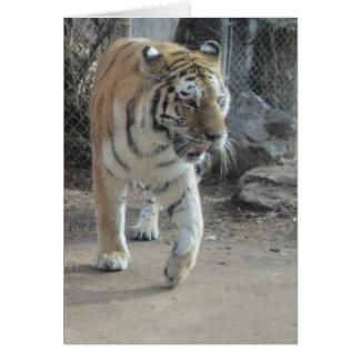 Prancing Tiger Blank Card