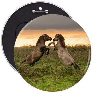 Prancing wild horses 6 inch round button