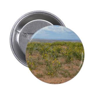 prarie de Moab Pin