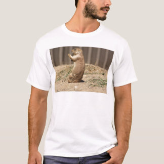 Prarie Dog Eating Grass Adult Tshirt