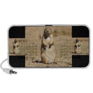 Prarie Dog iPhone Speaker