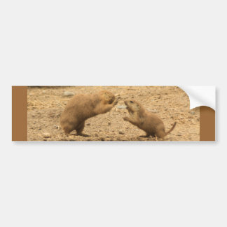 Prarie Dogs Give Me Some Skin Bumper Sticker