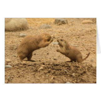 Prarie Dogs Give Me Some Skin Card
