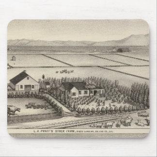 Pratt, Stewart farms Mouse Pad